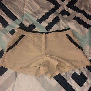 Pants - Professionally sexy shorts 😉